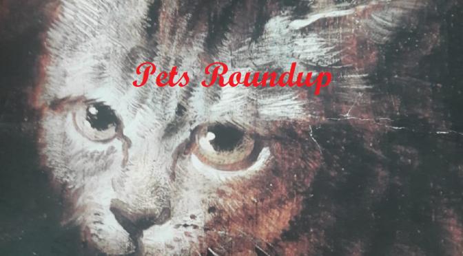 Animals & Pets RoundUp ~ Spotlight #179